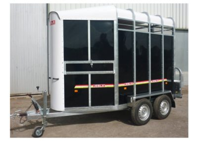 Trailer two horses polyester model B3