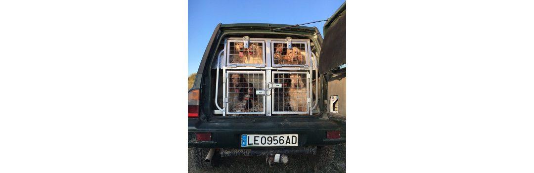 Transporte de animales